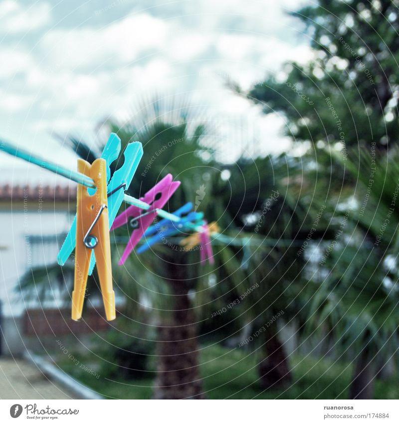 Himmel blau grün Pflanze Wolken gelb Luft Seil Dienstleistungsgewerbe Wäscheklammern Klammer regenbogenfarben