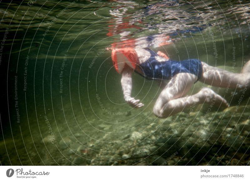 Seehündchen Freizeit & Hobby Ferien & Urlaub & Reisen Sommer Sommerurlaub Meer Kind Kleinkind Mädchen Kindheit Leben Körper 1 Mensch 3-8 Jahre Badeanzug