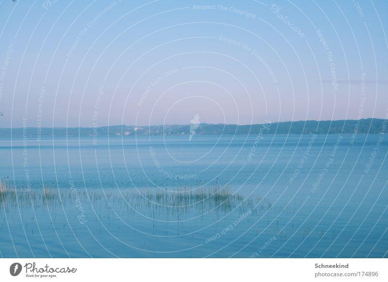 Blaue Stunde Himmel Wasser blau schön ruhig Einsamkeit Ferne Erholung Freiheit Landschaft Gras Glück Küste Zufriedenheit Horizont Ausflug