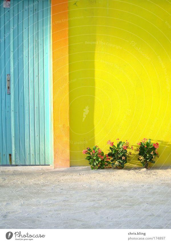 Hauseingang auf Maafushi Farbfoto mehrfarbig Außenaufnahme Dämmerung Schatten Sonnenlicht Zentralperspektive exotisch harmonisch Erholung ruhig