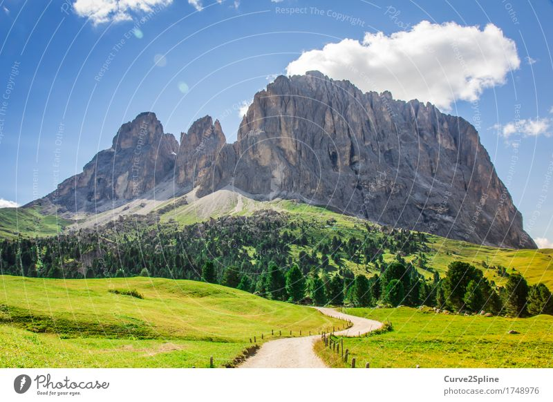 The Rock Natur Landschaft Urelemente Himmel Wolken Sonne Sommer Schönes Wetter Wiese Feld Wald Hügel Felsen Alpen Berge u. Gebirge Gipfel wandern Südtirol