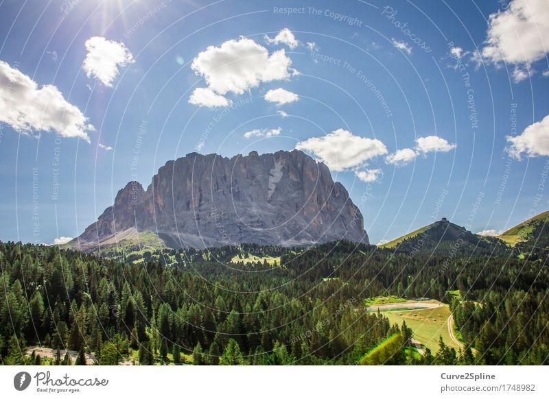 Südtirol Natur Landschaft Urelemente Himmel Wolken Sonne Sommer Schönes Wetter Baum Gras Sträucher Grünpflanze Wiese Feld Wald Hügel Felsen Alpen