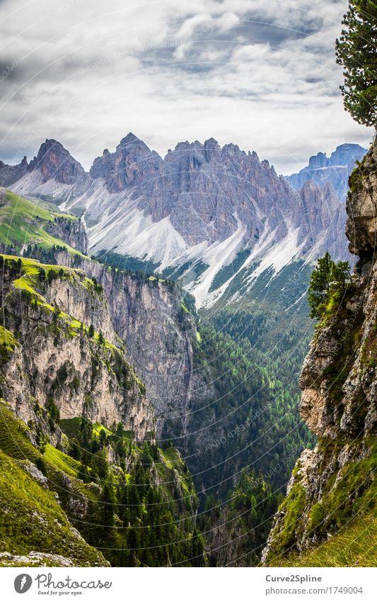 Bergwelten Natur Landschaft Urelemente Himmel Wolken Sommer Baum Feld Wald Hügel Felsen Alpen Berge u. Gebirge Gipfel fest Freiheit grün grau Stein steinig