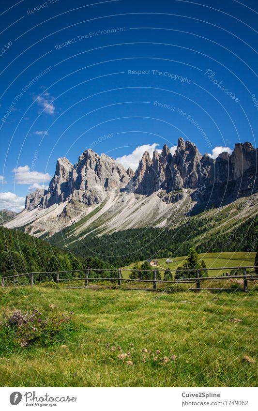 Alpine Welten Natur Landschaft Urelemente Himmel Wolken Sommer Schönes Wetter Wiese Feld Wald Hügel Felsen Alpen Berge u. Gebirge Gipfel wandern massiv steinig