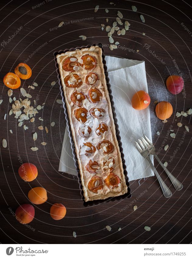 Aprikosentarte mit Mandelcreme Frucht Kuchen Dessert Süßwaren Ernährung Slowfood lecker süß orange Farbfoto Innenaufnahme Menschenleer Hintergrund neutral Tag