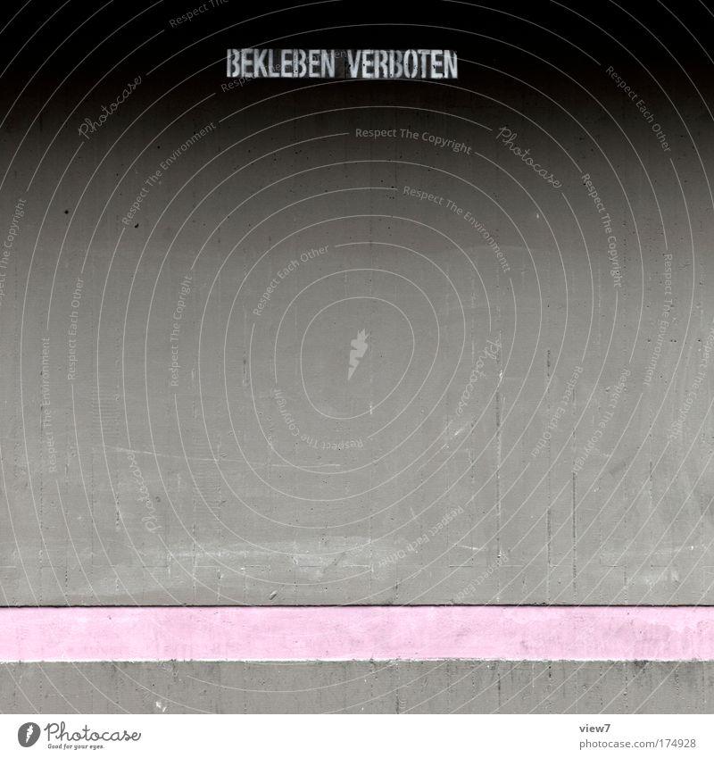 rosa in grau Farbfoto Gedeckte Farben Detailaufnahme Menschenleer Textfreiraum Mitte Schatten Starke Tiefenschärfe Häusliches Leben Haus Raum Mauer Wand Fassade