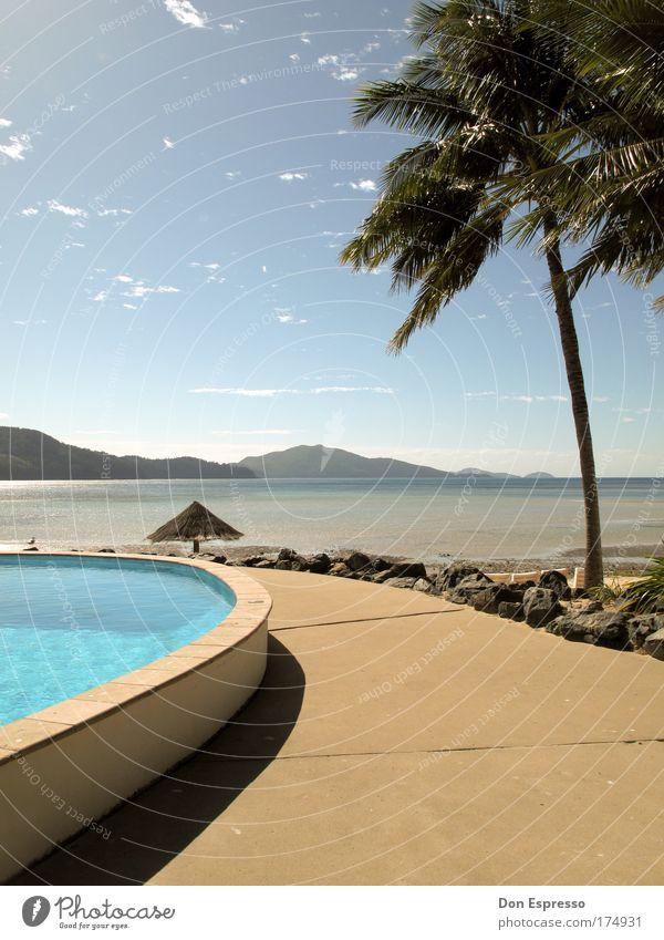 Daydream Himmel Meer Sommer Strand Ferien & Urlaub & Reisen Erholung Berge u. Gebirge Zufriedenheit Küste Australien Insel Schwimmbad Sonnenschirm Palme Schönes Wetter Schirm