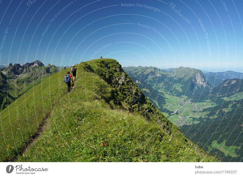 Gratwanderung wandern Umwelt Natur Landschaft Wolkenloser Himmel Sommer Schönes Wetter Felsen Alpen Berge u. Gebirge Gipfel Wege & Pfade Erfolg Bregenzerwald