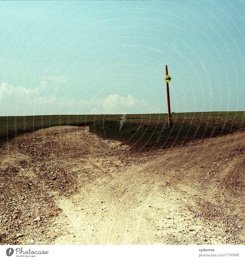 Bitte folgen Natur Himmel Sommer Leben Gras Bewegung Freiheit träumen Traurigkeit Wege & Pfade Landschaft Feld Umwelt Horizont Beginn Verkehr