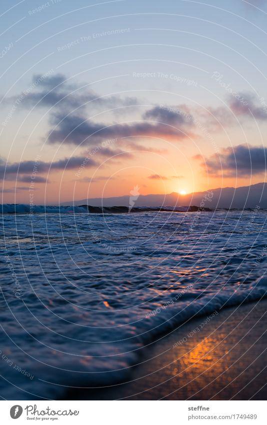 sundowner Natur Himmel Sonnenaufgang Sonnenuntergang Sonnenlicht Sommer Schönes Wetter Berge u. Gebirge Meer Ferien & Urlaub & Reisen Pazifik Pazifikstrand