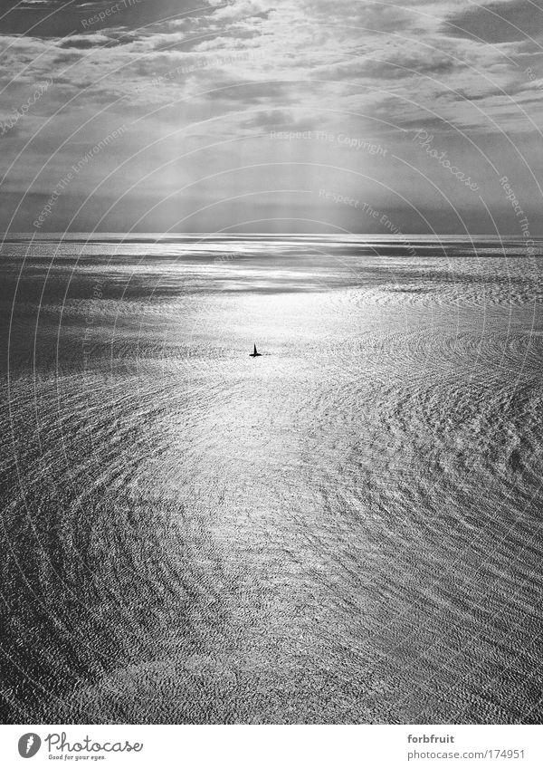 sealoner Wasser Himmel weiß Sonne Meer Sommer Ferien & Urlaub & Reisen schwarz Wolken Einsamkeit Gefühle Wärme Küste Wind Horizont Insel