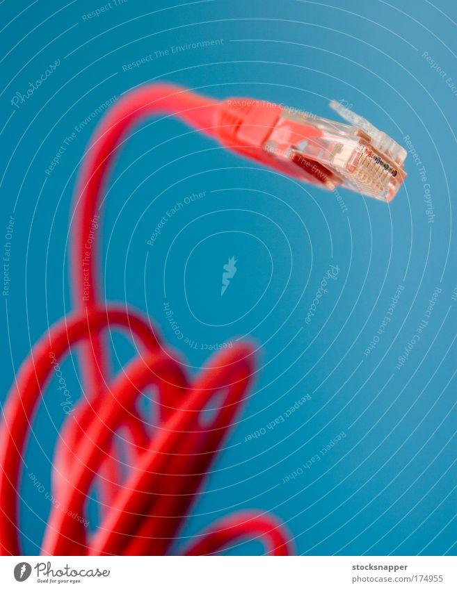 Ethernet-Anschluss Kabel Stecker Zwischenstück cat5 Katze 5 lan rot Nahaufnahme verwickelt Internet