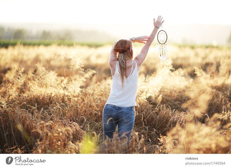 Traumfänger Mensch Natur Jugendliche Sommer schön Junge Frau Erholung ruhig 18-30 Jahre Erwachsene Umwelt Leben Gefühle natürlich feminin träumen