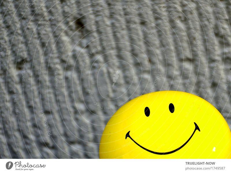 Happy vor Grau Mensch Sonne Freude schwarz Gesicht Auge gelb Leben Lifestyle Glück Feste & Feiern grau Metall Zufriedenheit frisch Dekoration & Verzierung