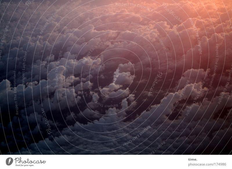 Dem Himmel so nah Luftaufnahme Abend Licht Schatten Vogelperspektive Ferien & Urlaub & Reisen Ferne Freiheit Natur Landschaft Wolken Schönes Wetter Wind