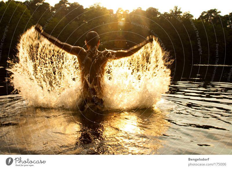 Wasserengel Mensch Natur Jugendliche Sonne Sommer Ferien & Urlaub & Reisen Ferne Sport Bewegung Mann Freiheit See Wassertropfen Rücken Freizeit & Hobby