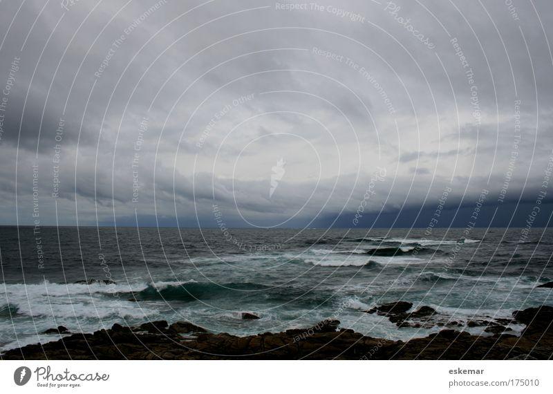 Ozean Farbfoto Gedeckte Farben Außenaufnahme Menschenleer Textfreiraum oben Tag Weitwinkel Natur Landschaft Urelemente Wasser Himmel Wolken Gewitterwolken