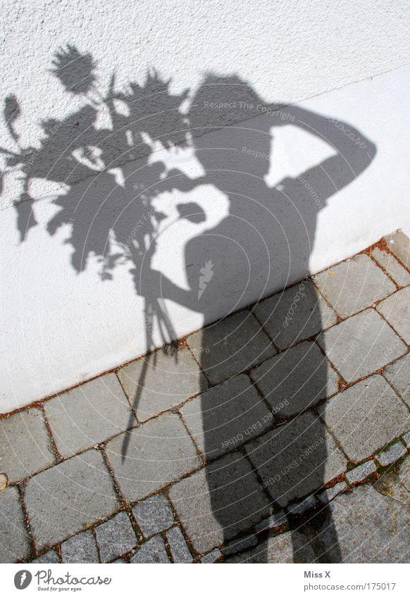 ein grauer Strauß Mensch Sommer Blume Blatt Erwachsene Liebe feminin Jubiläum Wand Gefühle Blüte Glück Mauer Feste & Feiern Zufriedenheit Geburtstag