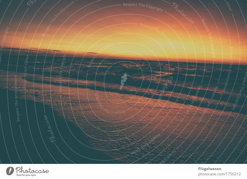 Northsea Ferien & Urlaub & Reisen Sommer Meer Einsamkeit Gefühle Küste Tourismus Wellen Ausflug Abenteuer Ostsee Sommerurlaub Nordsee Meerestiefe sommerlich