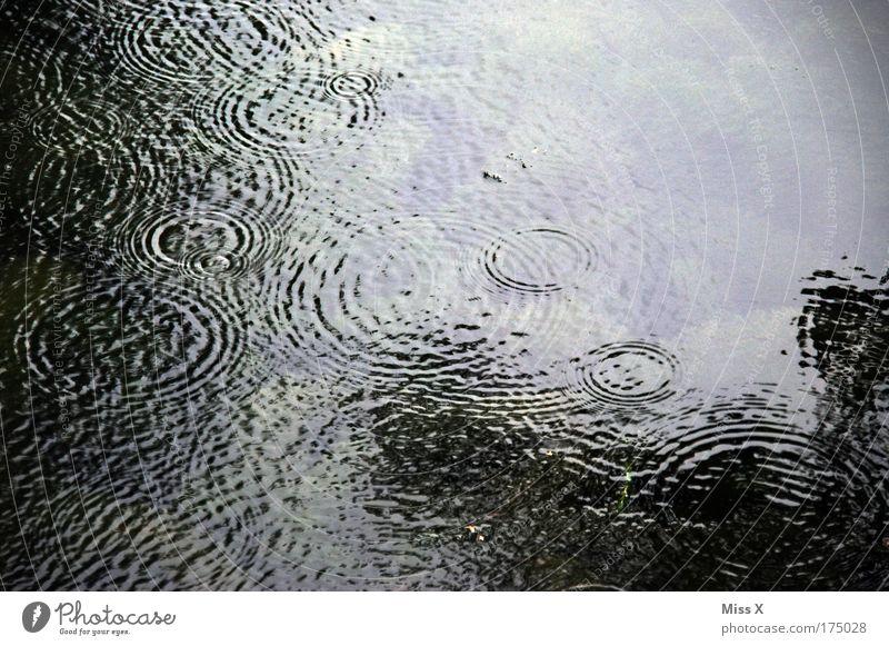 Regen im Sommer Wasser dunkel Traurigkeit See Wellen Wetter Wassertropfen nass Ausflug Trauer trist Fluss Klima Fernweh