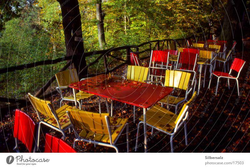 Vorsesong Gastronomie Herbst Frühling Dienstleistungsgewerbe Gartenkneipe Bierlokal Ausflug