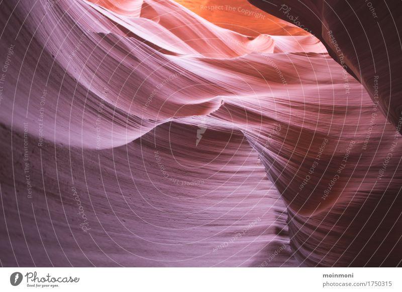 Antelope Canyon Lifestyle Ferien & Urlaub & Reisen Tourismus Ausflug Abenteuer Expedition Sommer Sommerurlaub Natur Urelemente Schlucht Menschenleer