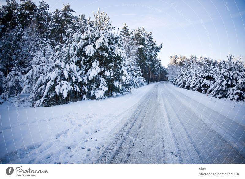 wo bleibt der schneeflug? Farbfoto Außenaufnahme Menschenleer Dämmerung Weitwinkel Winterurlaub Natur Landschaft Wolkenloser Himmel Eis Frost Schnee Wald