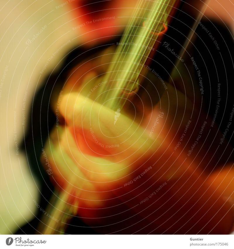 """""""Some Kind Of Stranger"""" III grün rot Freude schwarz gelb Gefühle Musik Freizeit & Hobby Tanzveranstaltung Kommunizieren Show Konzert Rockmusik Bühne Gitarre Veranstaltung"""