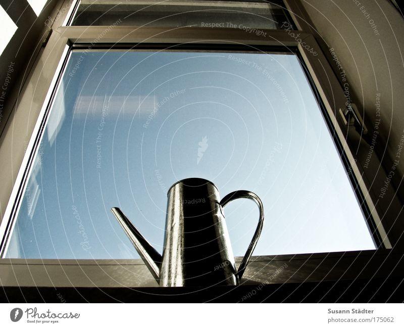 Schwarzer Daumen Wasser Tod Fenster Traurigkeit Himmel (Jenseits) Metall Glas Spiegel Stahl Rost Sorge Gießkanne Rollo Verschwiegenheit