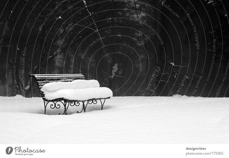 Winterschlaf ruhig kalt Schnee Stil Park Design elegant Wetter Klima friedlich Parkbank Winterstimmung Schneedecke