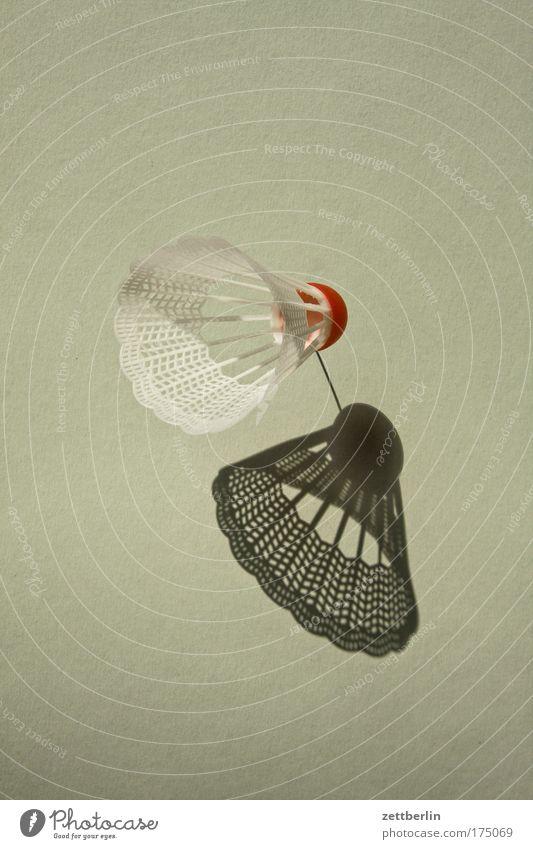 Federball Badminton Detailaufnahme Dinge Freizeit & Hobby Innenaufnahme Spielen Sport Häusliches Leben Schatten Sonne Ball Aktion Objektfotografie
