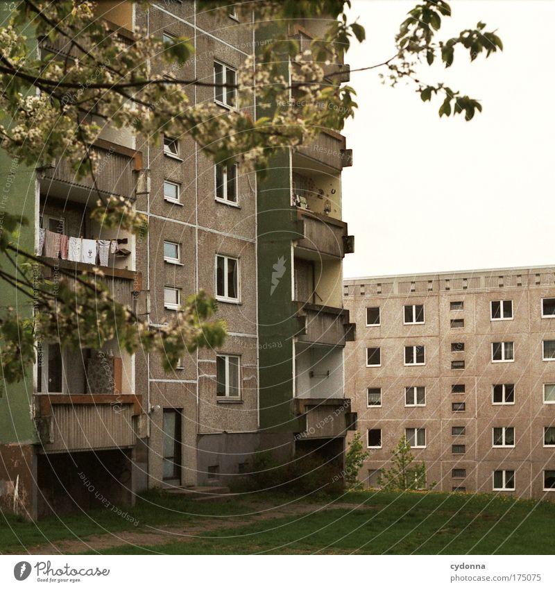 Heute wie gestern Einsamkeit Leben Gefühle träumen Traurigkeit Architektur Wohnung Hochhaus Fassade Perspektive Zukunft trist Kommunizieren Wandel & Veränderung