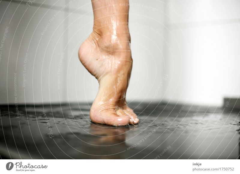 auf einem Bein kann man stehen III Mensch Frau schön Erwachsene Leben natürlich Fuß ästhetisch stehen nass Körperpflege Barfuß strecken Unter der Dusche (Aktivität) Pediküre Zehenspitze