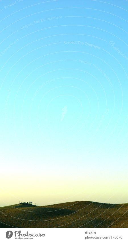 wolkenlos Natur Himmel weiß Sonne grün blau Sommer Ferien & Urlaub & Reisen ruhig gelb Ferne Erholung Freiheit Landschaft hell Feld