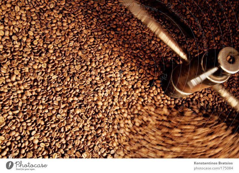 frischer Kaffeeduft Lebensmittel Wärme braun trocken drehen Wissenschaften Duft genießen Geruch Bioprodukte Textfreiraum Qualität Leistung Espresso
