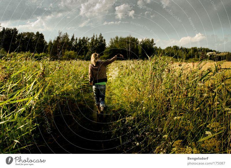 Finland Frau Mensch Natur Jugendliche Himmel Sommer Ferien & Urlaub & Reisen Wolken Ferne Gras Freiheit wandern Wind Ausflug Spaziergang