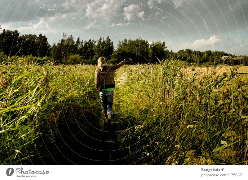 Finland Freizeit & Hobby Ferien & Urlaub & Reisen Ausflug Ferne Freiheit Sommer Sommerurlaub wandern Mensch Junge Frau Jugendliche 1 Natur Himmel Wolken