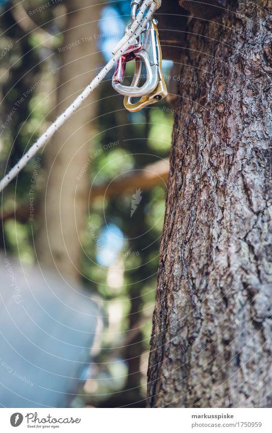 Kletterpark Karabiner Bewegung Lifestyle Sport Spielen gehen springen Freizeit & Hobby Ausflug elegant Kindheit Abenteuer Fitness berühren Neugier fallen