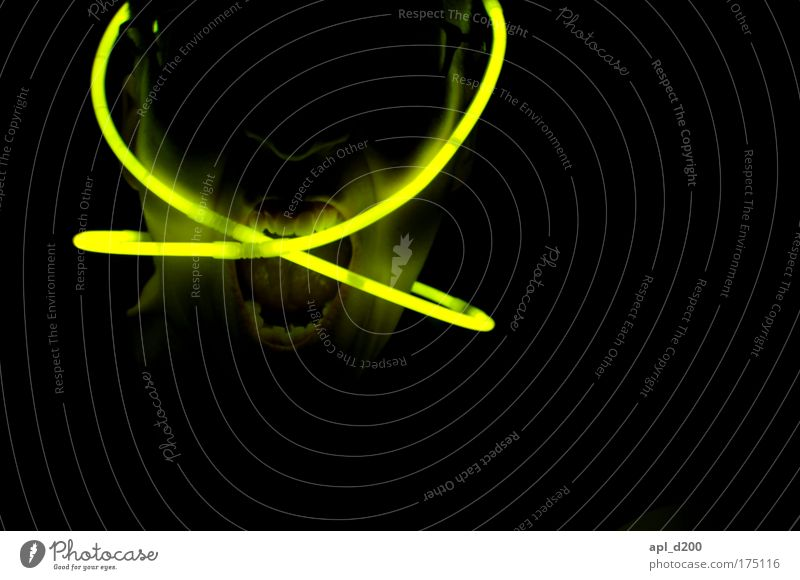 Berghain 5:46 UHR Mensch grün schwarz Erwachsene gelb Kopf Party Kraft maskulin ästhetisch außergewöhnlich Zukunft bedrohlich Technik & Technologie Zähne 18-30 Jahre