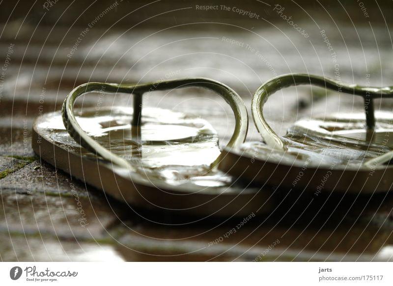 Sommerregen Farbfoto Außenaufnahme Nahaufnahme Menschenleer Tag Schwache Tiefenschärfe Zentralperspektive Sommerurlaub Klimawandel Wetter schlechtes Wetter