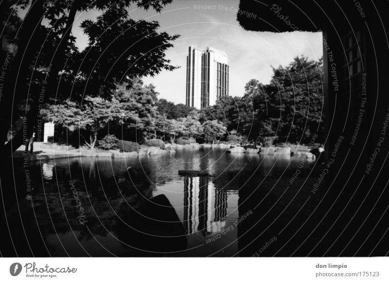 kein weiß ohne schwarz Baum ruhig Haus Garten Park Architektur Insel analog Schönes Wetter Teich Stadt Schwarzweißfoto