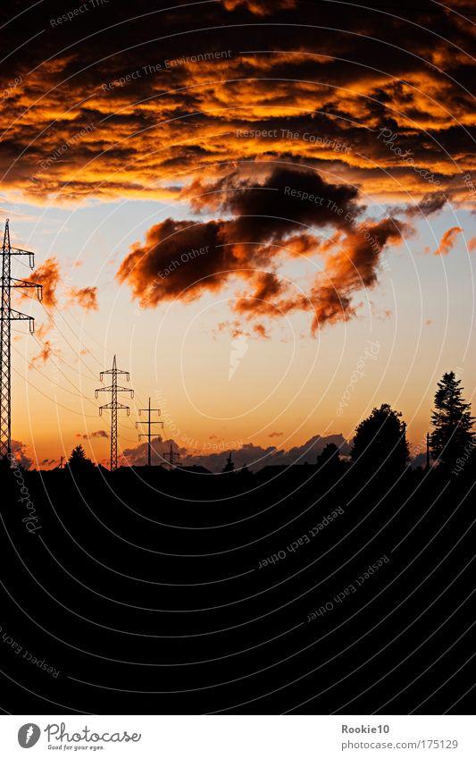 Little Drama Natur Himmel Baum blau Sommer Wolken gelb dunkel Gefühle Landschaft Stimmung Angst Energie Lifestyle ästhetisch Coolness