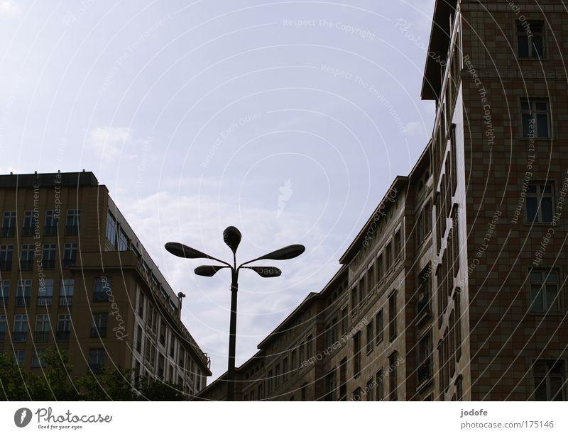 urbane Blume alt Stadt blau Haus dunkel Berlin Fenster Gebäude trist Bauwerk Straßenbeleuchtung Hauptstadt Bogen eckig Laternenpfahl