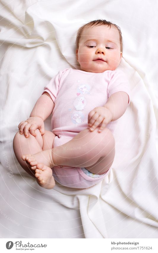 Baby girl on a blanket feminin Mädchen Familie & Verwandtschaft 1 Mensch 0-12 Monate weich rosa rein beautiful beauty birth boy camera child child education