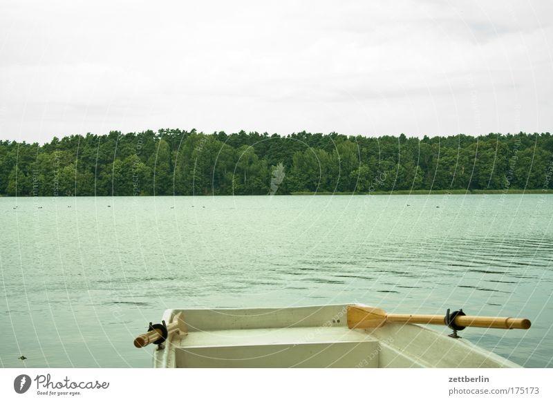 Ruderboot Natur Wasser Himmel Sommer Ferien & Urlaub & Reisen Wolken Erholung See Wasserfahrzeug Küste Ausflug Freizeit & Hobby Seeufer Flussufer Paddel Fluss