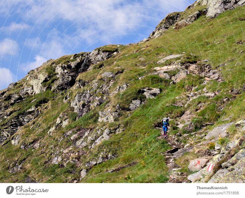 Hinauf Sport Klettern Bergsteigen wandern Mensch feminin Junge Frau Jugendliche Erwachsene 1 18-30 Jahre Natur Landschaft Himmel Sommer Schönes Wetter
