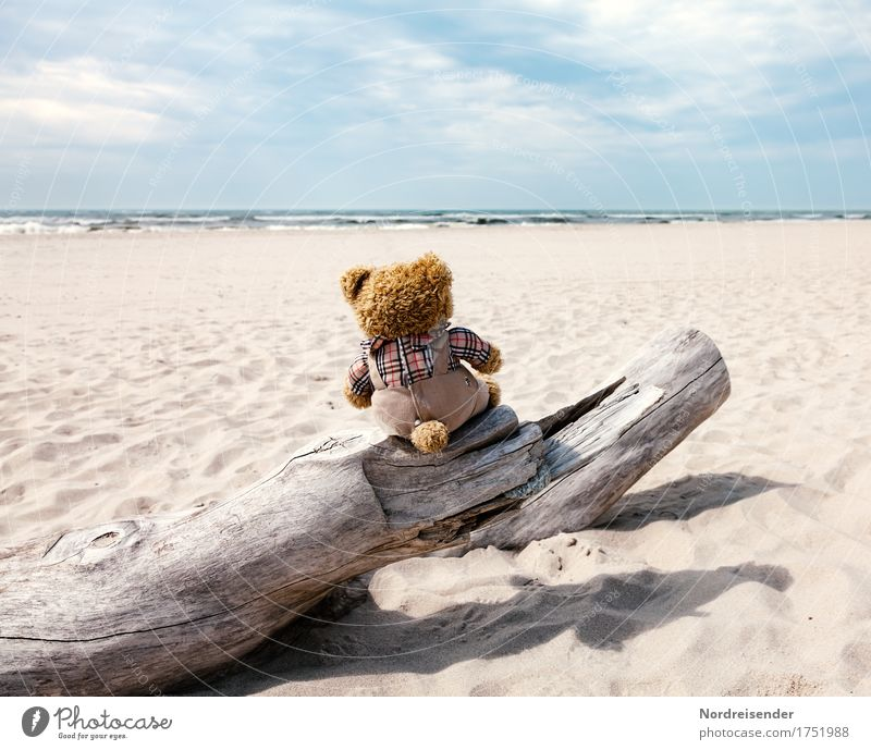 Meerblick Ferien & Urlaub & Reisen Sommer Wasser Sonne Meer Ferne Strand Freiheit Sand Tourismus träumen Wellen Schönes Wetter Abenteuer Urelemente Sehnsucht