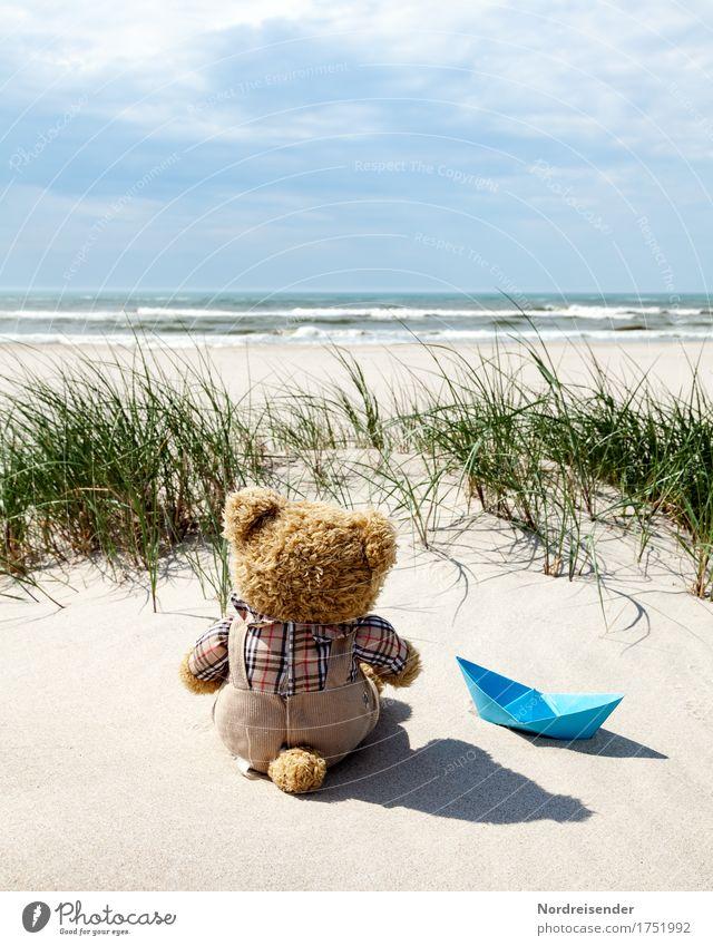 Sehnsucht nach Meer Natur Ferien & Urlaub & Reisen Sommer Wasser Sonne Landschaft Meer Wolken Freude Ferne Strand Gras Freiheit Sand träumen Wellen