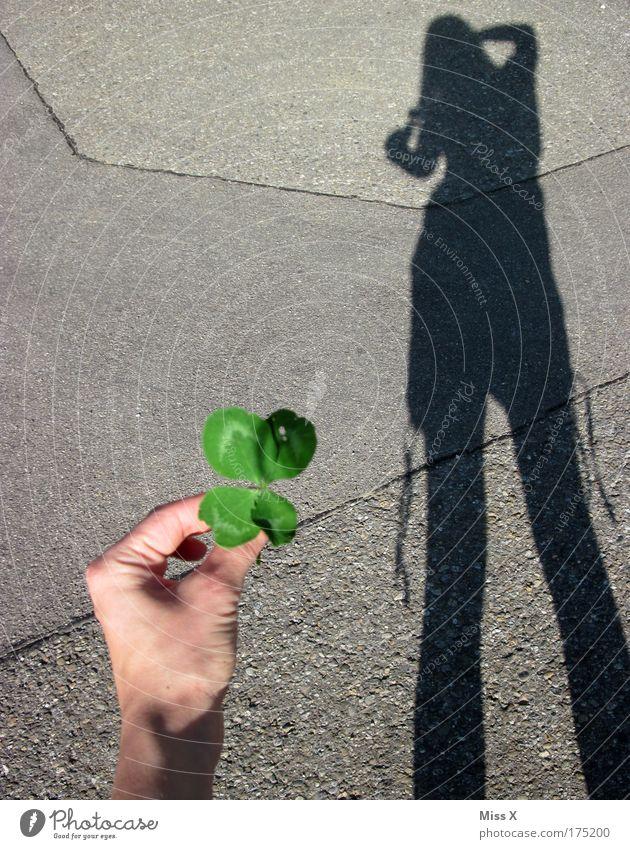 und was knipst du? II Mensch Jugendliche Straße Gefühle Glück Wege & Pfade Religion & Glaube Erwachsene Erfolg Ausflug Hoffnung Fröhlichkeit Schönes Wetter