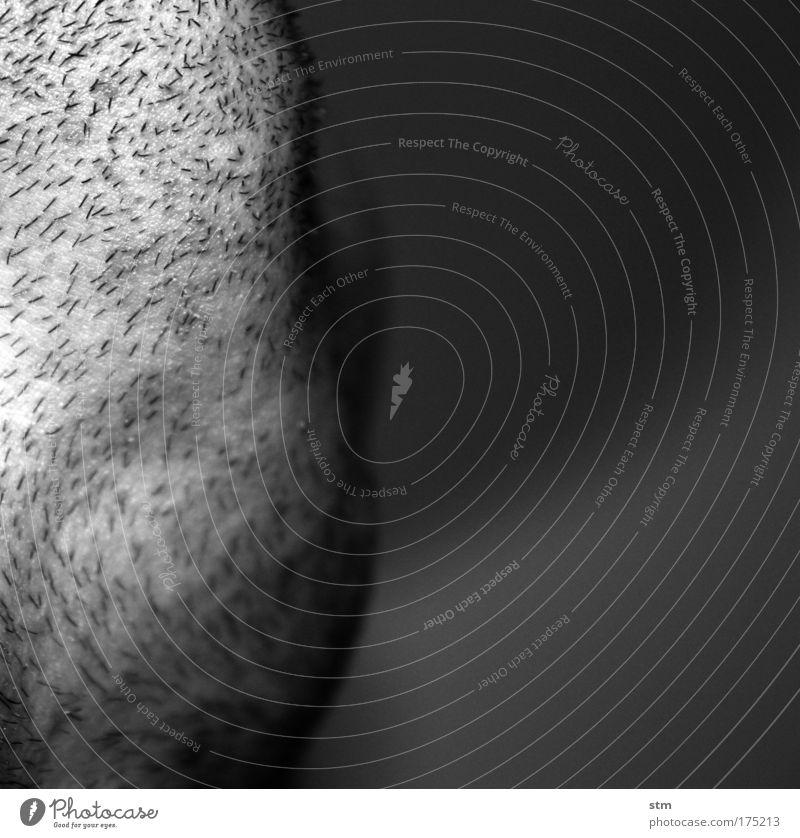 ba-ba-ba ba/baba ba-ba-ba ba/baba ba-ba-ba ba/baba BAAAAART Schwarzweißfoto Nahaufnahme Detailaufnahme Makroaufnahme Textfreiraum rechts Schwache Tiefenschärfe